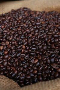 café de especialidad recién tostado